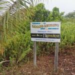 ムル国立公園近くの温泉 / Lipang Lewan's Hot Spring, Mulu, Sarawak