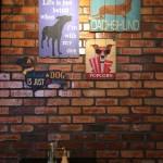 コタキナバルの犬カフェ&猫カフェ